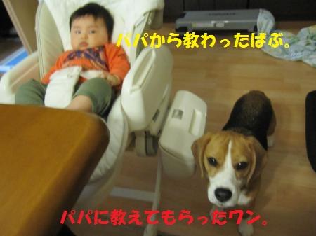 IMG_4821_convert_20130310165506.jpg