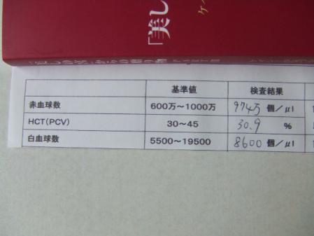DSCF3629.jpg