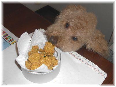 チャ太郎とクッキー