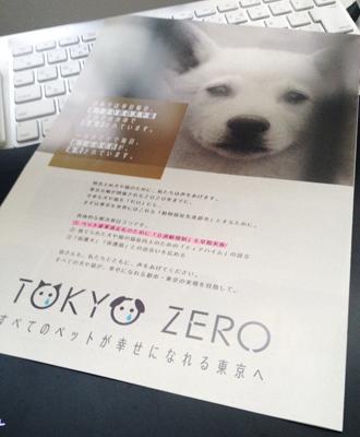 tokyozero写真