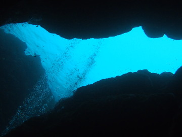 石垣島2012年6月19~21日 14502