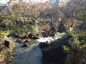 1月2日檜町公園