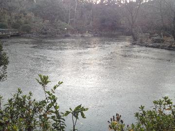 1月6日有栖川宮公園