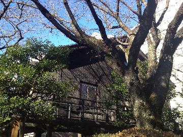 1月18日乃木邸3