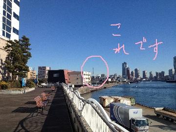 竹芝桟橋スカイツリー