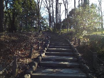 2月16日有栖川宮公園2(1)