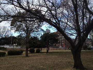 青山公園北地区2(1)