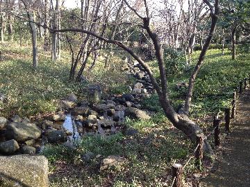 2月22日北の丸公園8(1)