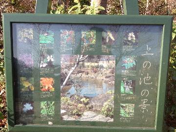 3月2日檜町公園02