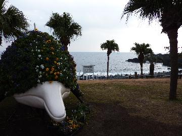 伊豆海洋公園陸1