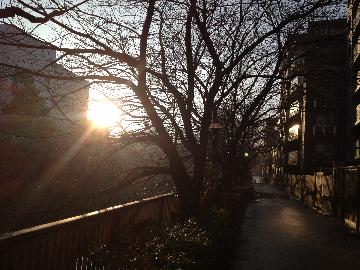 megurokawa2gatu13niti(1).jpg