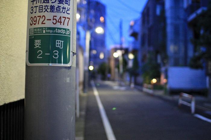 IMG_0282.jpg
