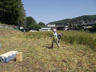 20140928そば刈り (1)