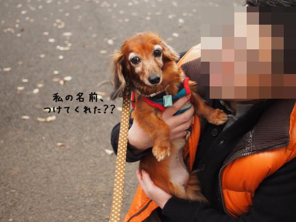 121111_02_20121112234949.jpg