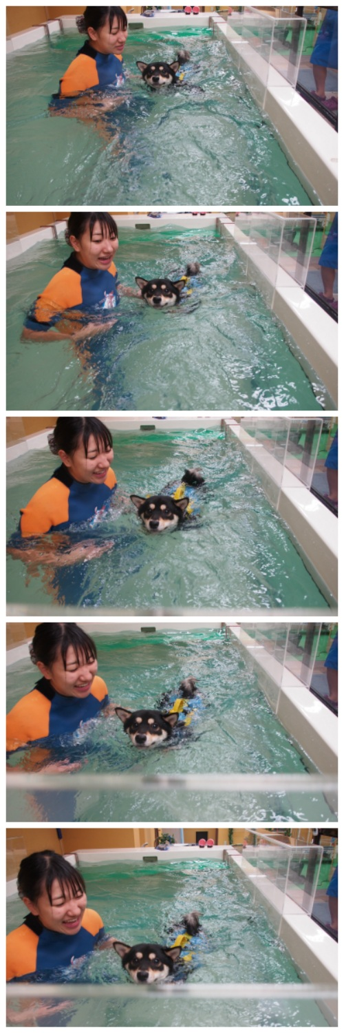 Kai Swimming
