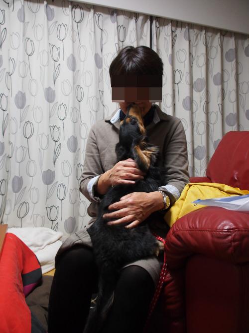 20121129_02.jpg