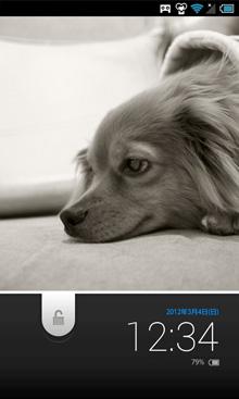 WS_Dog-thumb02.jpg