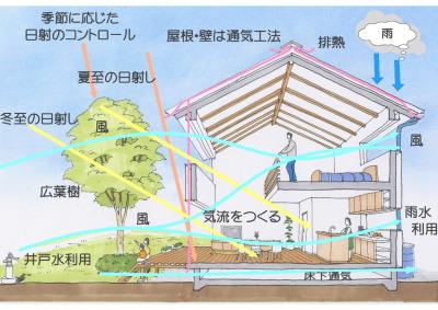 断面イメージ5-1