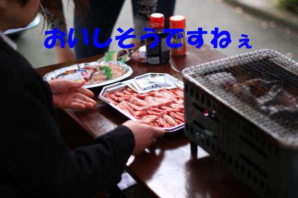 IMG_0813-6_convert_20100505230036のコピー