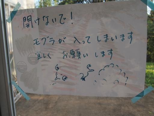 20140914・花公園18・イベント温室