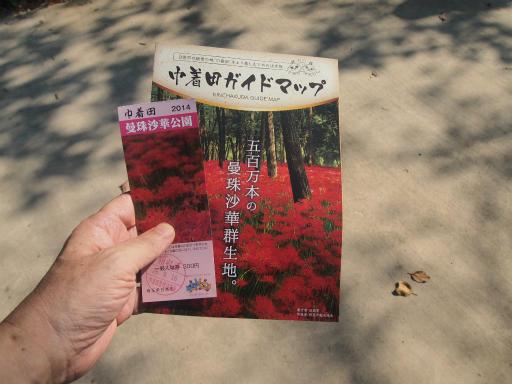 20140915・巾着田1-03