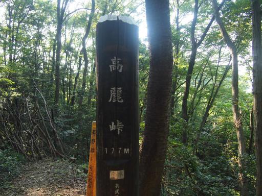 20140915・巾着田2-09