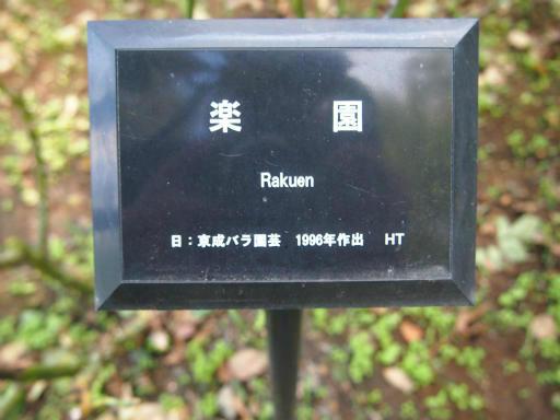20140914・フラワーパーク植物06