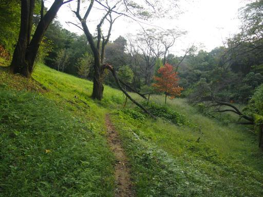 20141012・狭山湖空11