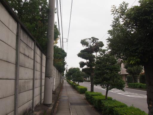 20141009・高崎3-11