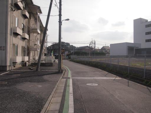 20141012・狭山湖1-11