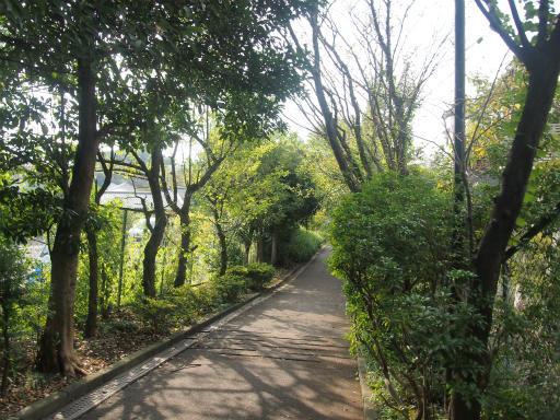 20141012・狭山湖1-09