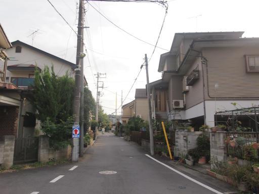 20141012・狭山湖1-15