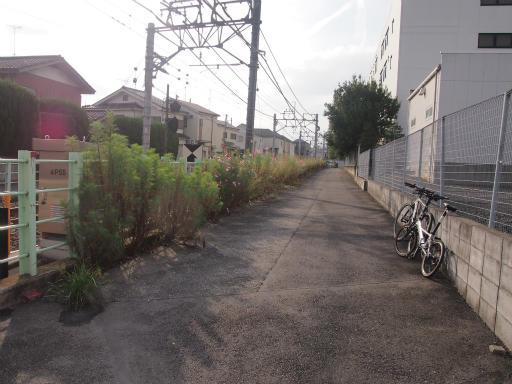 20141012・狭山湖1-13