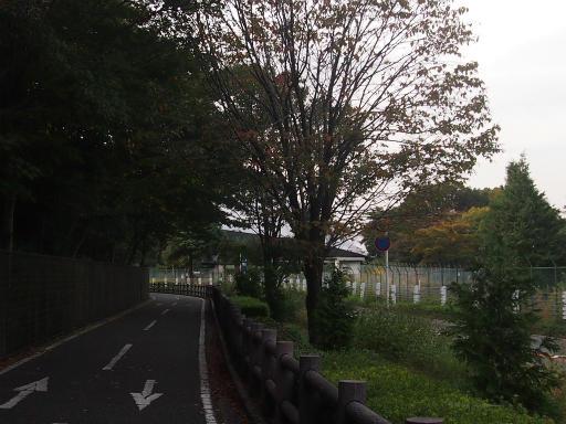 20141012・狭山湖2-18
