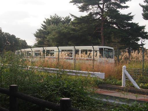20141012・狭山湖2-16