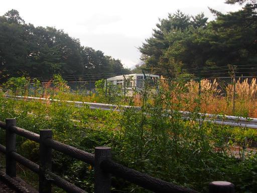 20141012・狭山湖2-17