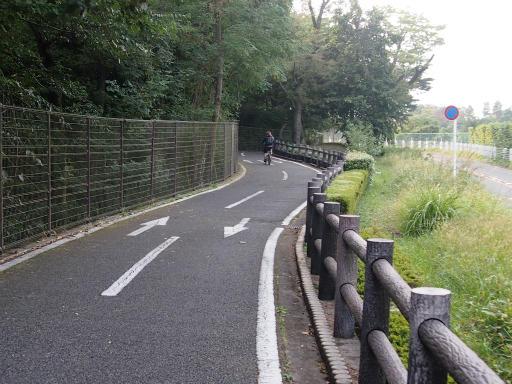 20141012・狭山湖2-15