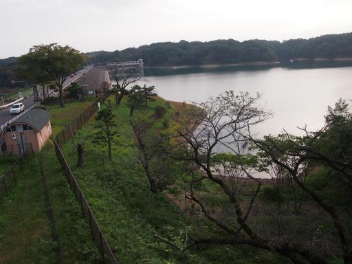 20141012・狭山湖2-22