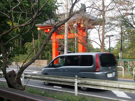 20141012・狭山湖3-05