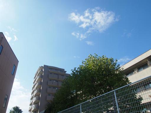 20141025・小手指散歩16