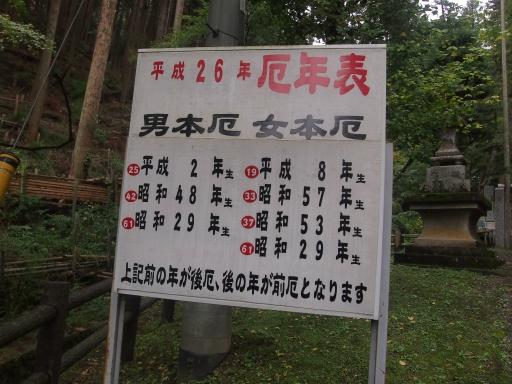 20141102・飯能祭り1-04・中