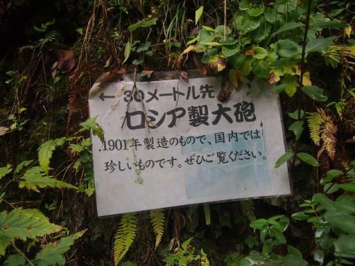 20141102・飯能祭り1-09・中