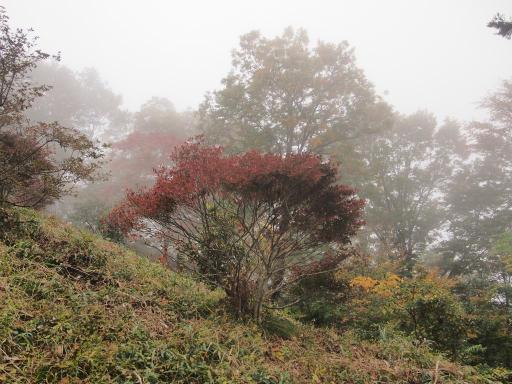 20141102・飯能空11・雲の関八州