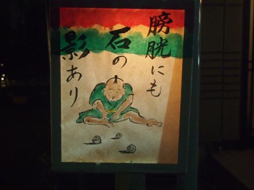 20141102・飯能2・祭り09