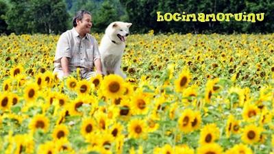 100823_hoshi_main.jpg