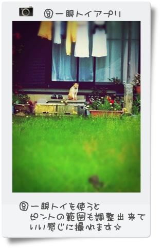 iphone写真 072