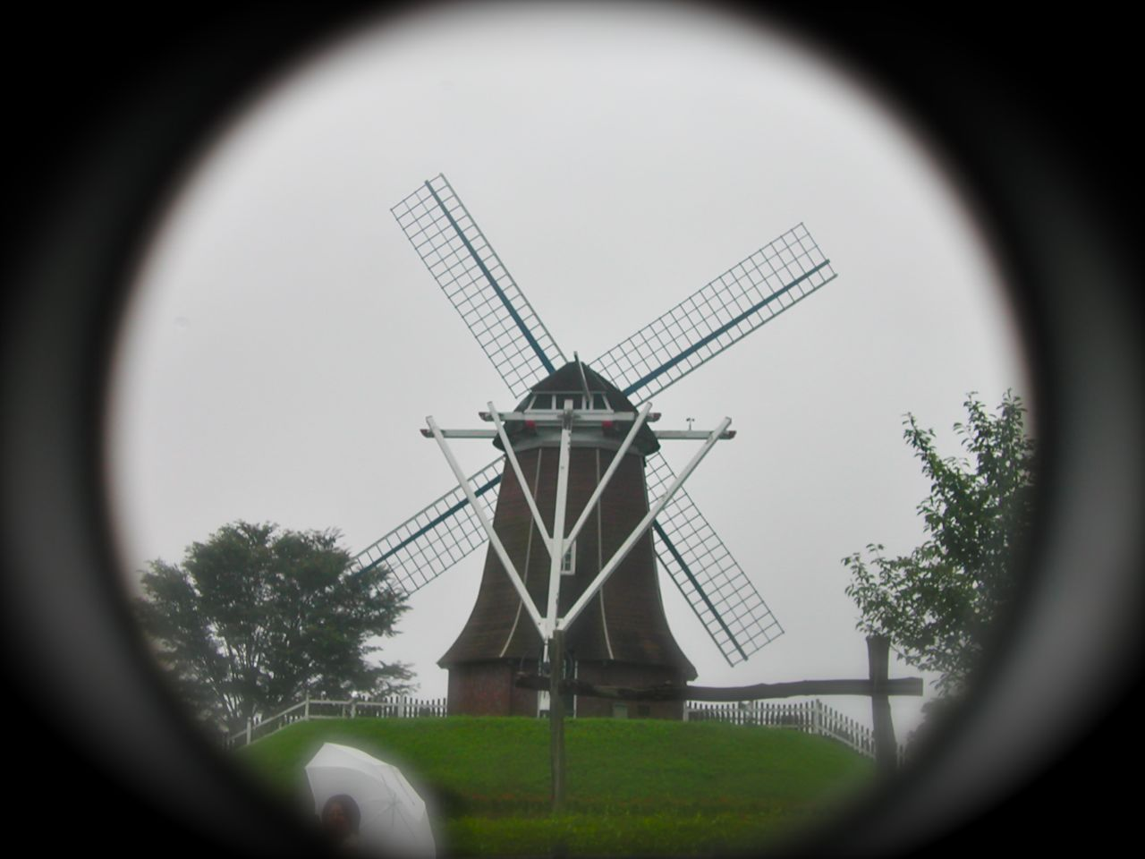 DSCN0669.jpg