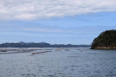 女川海岸3