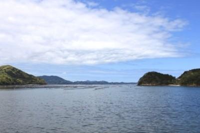 女川海岸2