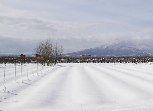 雪岩木山-2